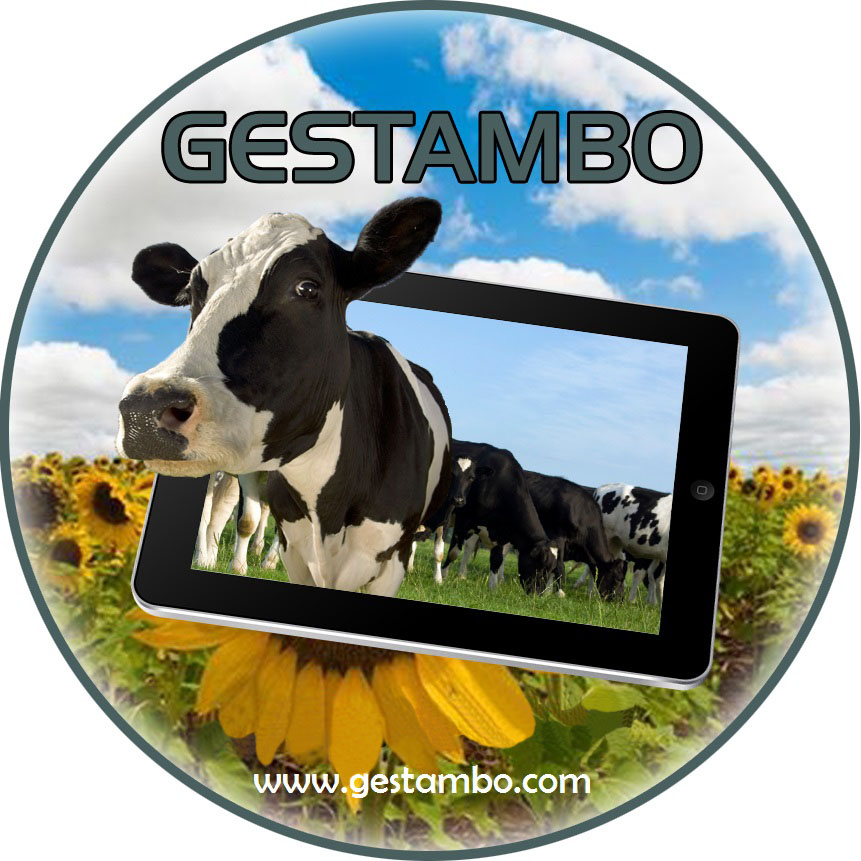 Gestambo